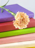 Books with flower Royalty Free Stock Image