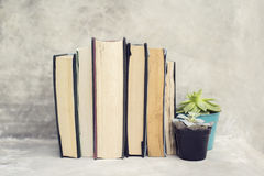Books and flower pots Stock Images