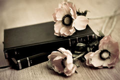 Books and flowers Royalty Free Stock Photo