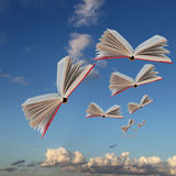 Books are flying. Against the background of the cloudy sky and  earth Royalty Free Stock Image