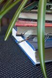 Books. Glasses and Green Plant. A stack of books with reading glasses viewed through green spider plant leaves Stock Photo