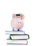 Books and graduation piggy bank Stock Photos