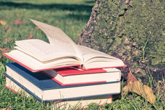 Books on grass Stock Photo