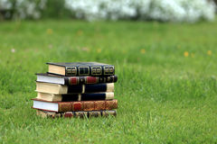 Books on grass. Books with beautiful covers on grass Stock Images