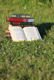 Books on grass. Books with beautiful covers on grass Royalty Free Stock Photo