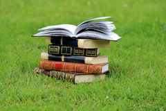 Books on grass Royalty Free Stock Photo
