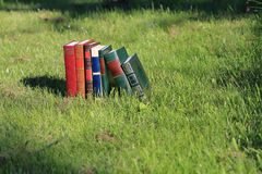 Books on grass. Books with beautiful covers on grass Stock Photos