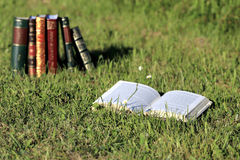 Books on grass. Books with beautiful covers on grass Royalty Free Stock Photos