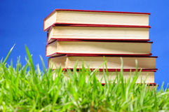 Books on grass. Educational concept. Royalty Free Stock Photography