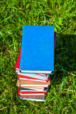 Books on the Grass Royalty Free Stock Photography