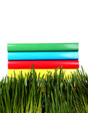 Books on the Grass Royalty Free Stock Image