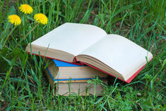Books. On the green grass Royalty Free Stock Photo