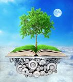 books isolerat gammalt för begrepp utbildning Trädet av kunskap växer Royaltyfria Foton