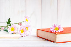 Books or journal with flowers. Stock Photos