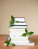 Books for knowledge and the brain with leaves Stock Image