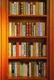 Books on library shelves stock image