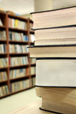 Books in library Royalty Free Stock Photos