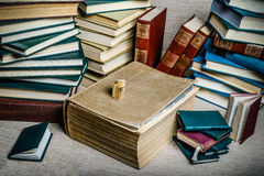 Books from my library Royalty Free Stock Photography