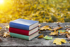 Books on the old wooden table, covered in yellow maple leaves. Back to school. Education concept. Beautiful autumn background. Stock Photography