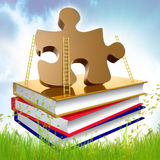 Books about problem solving and solution Royalty Free Stock Images