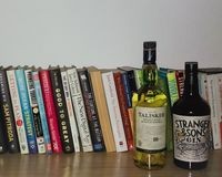 BOOKS RACK WITH GIN AND WHISKY royalty free stock photo