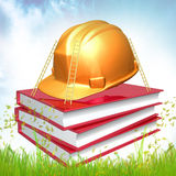 Books about safety and maintenance. 3d icon illustration Royalty Free Stock Images