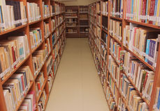 Books on a shelf in library. Stock Images
