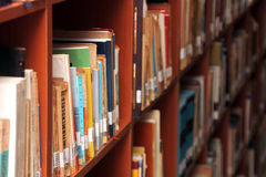 Books on a shelf in library. Royalty Free Stock Image