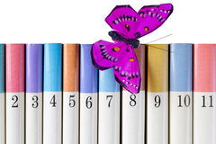 Books with a Silk Butterfly Royalty Free Stock Photo