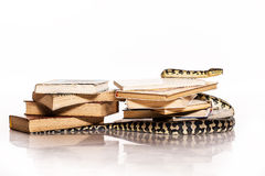 Books and a snake on a white background. Education and wisdom in the form of a stack of books and a beautiful snake on a white background royalty free stock photo