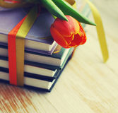 Books and a spring of tulip Royalty Free Stock Images
