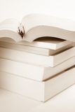 Books Stack. Book Stack and pen close up shot Royalty Free Stock Photos