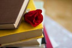 Books and textbook Stock Photos