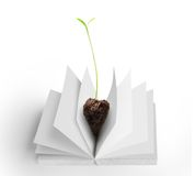 Books and tree Royalty Free Stock Photo