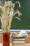 Books and vase with the ears of wheat Stock Images