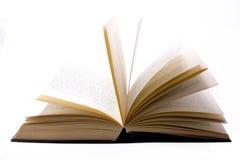 books vishet Royaltyfria Foton