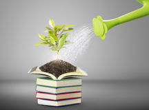Books and watering pot Stock Photo