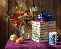 The books which are tied up by a blue tape Royalty Free Stock Image