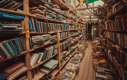 Free Books With Literature And Manuals On Bookshelves Of Vintage Bookshop Stock Image - 144232331