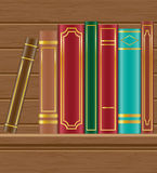 Books on wooden shelf vector illustration Stock Photography