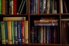 Books on a wooden shelfs. old and new books on wooden shelves Royalty Free Stock Photos