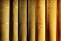 A bookshelf. Books on the bookshelf on the evening sun light Stock Images
