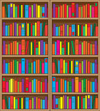 Bookshelf. A large, double case bookshelf, filled with volumes of multi colored books vector illustration