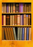 Bookshelf. A collection of books in a bookcase in vector format Stock Photos