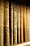 A bookshelf from the angle view. A bookshelf in the light of evening sun Stock Photography
