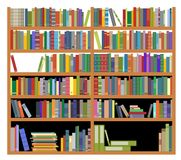 Bookshelf with books Stock Images