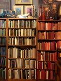 Bookshelf. Colorful bookshelf in antique store Stock Photography