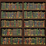 Bookshelf full of books background. Royalty Free Stock Image