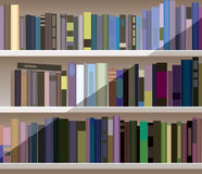 Bookshelf with many books Stock Photography