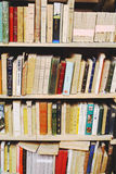 Bookshelf. With old books and covers Royalty Free Stock Images